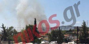 Υπό μερικό έλεγχο η φωτιά στις Αχαρνές