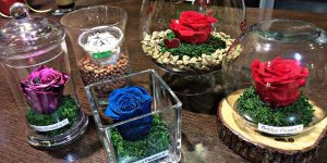GOLDEN FLOWERS: Αληθινά ΜΕΓΑΛΑ τριαντάφυλλα που ζουν ΓΙΑ ΠΑΝΤΑ!