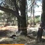 ΤΡΑΓΩΔΙΑ στη ΒΑΡΥΜΠΟΜΠΗ: Τρεις άνθρωποι ανασύρθηκαν νεκροί από πηγάδι