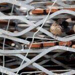 Σε «σκληρό» lockdown ο Δήμος Αχαρνών – 166 τα ενεργά κρούσματα